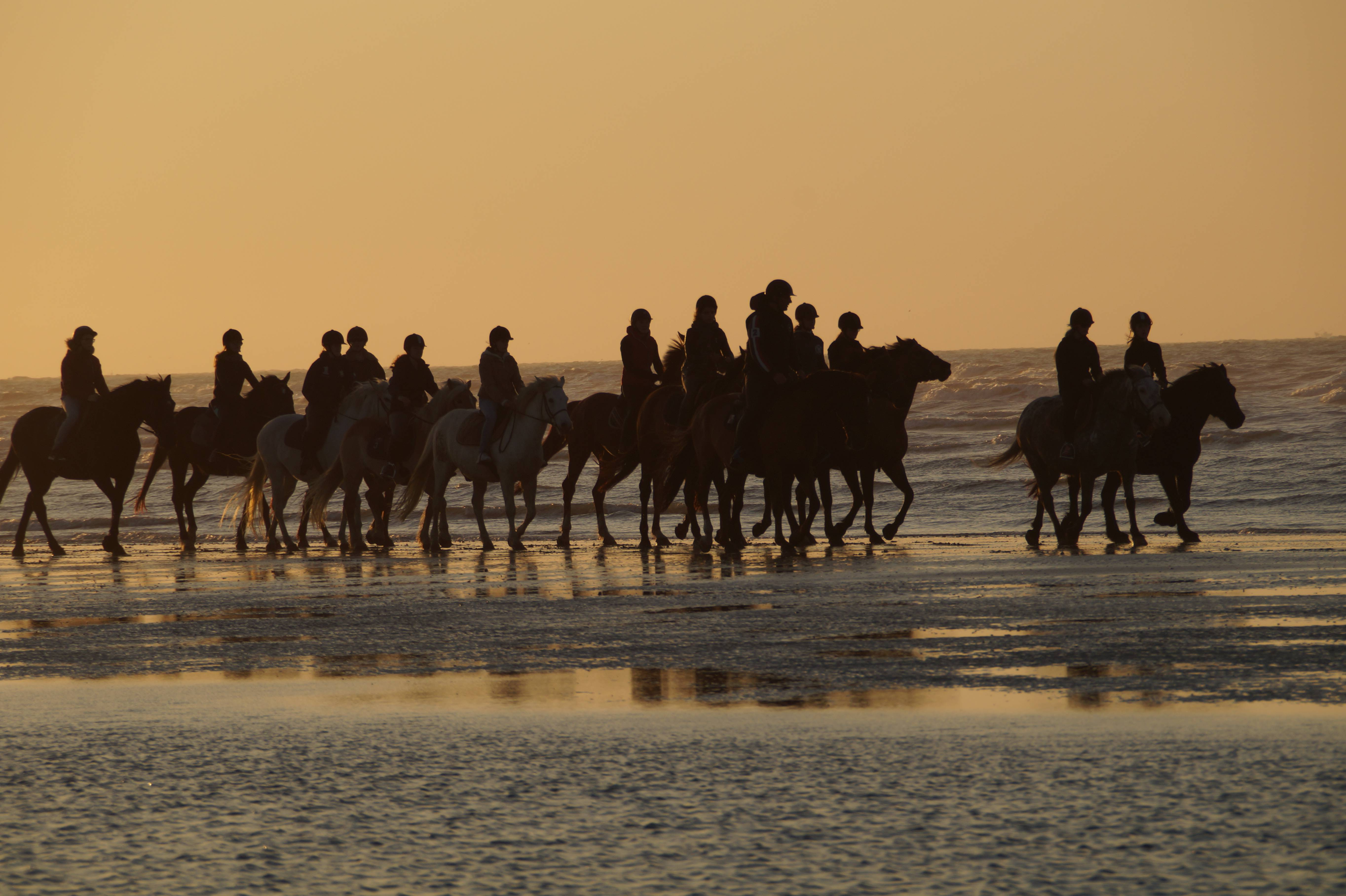 equitation sur la plage de cabourg