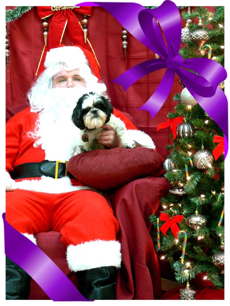 Maddie and Santa