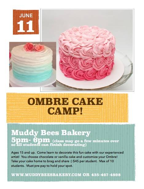 June 11 Cake Class