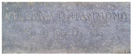 HAMMOND, William D. - Pvt., Cos. H, F, C