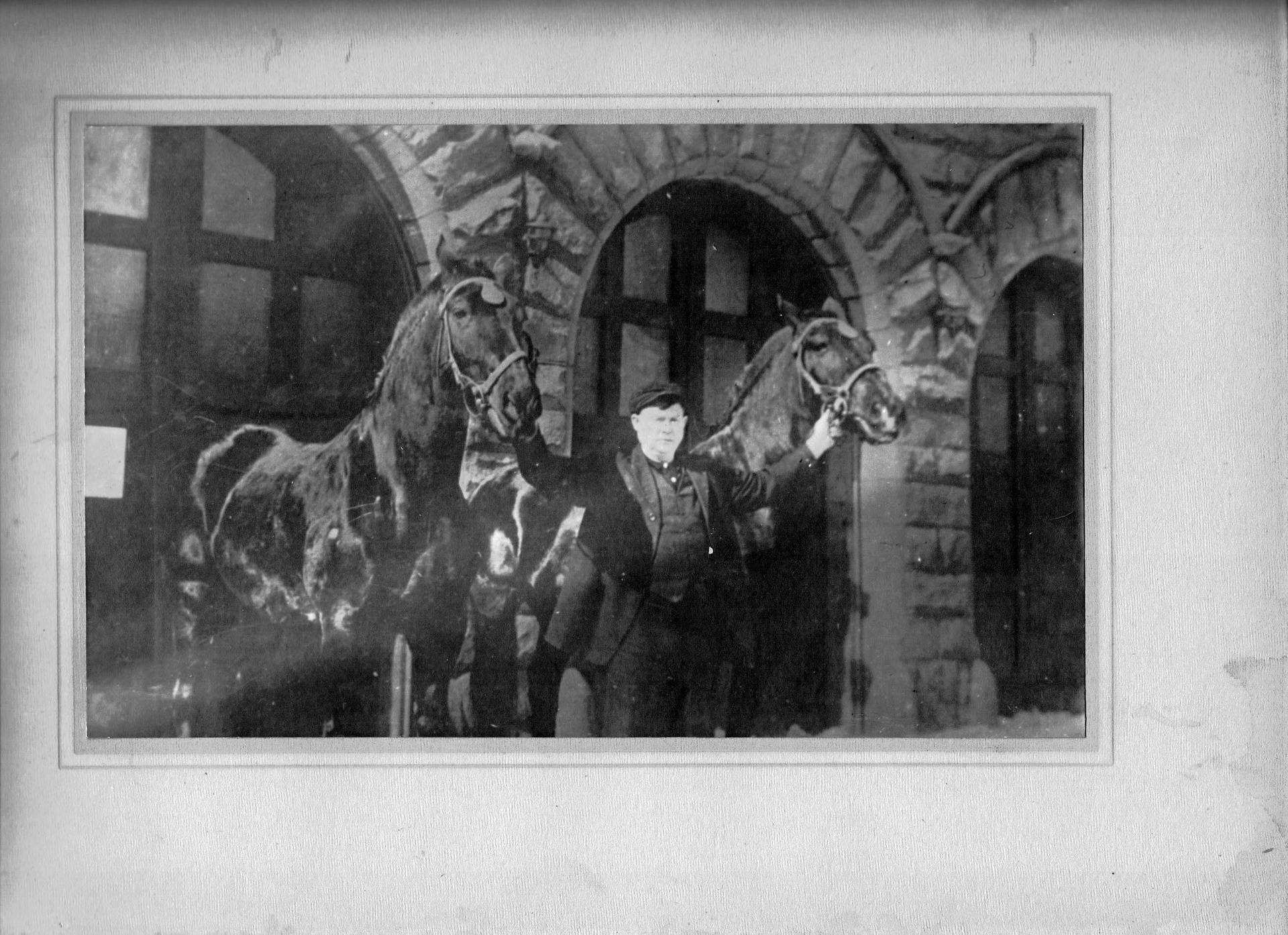 Fire Station Horses