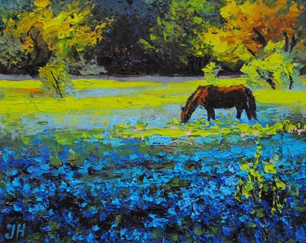 Spring bluebonnets