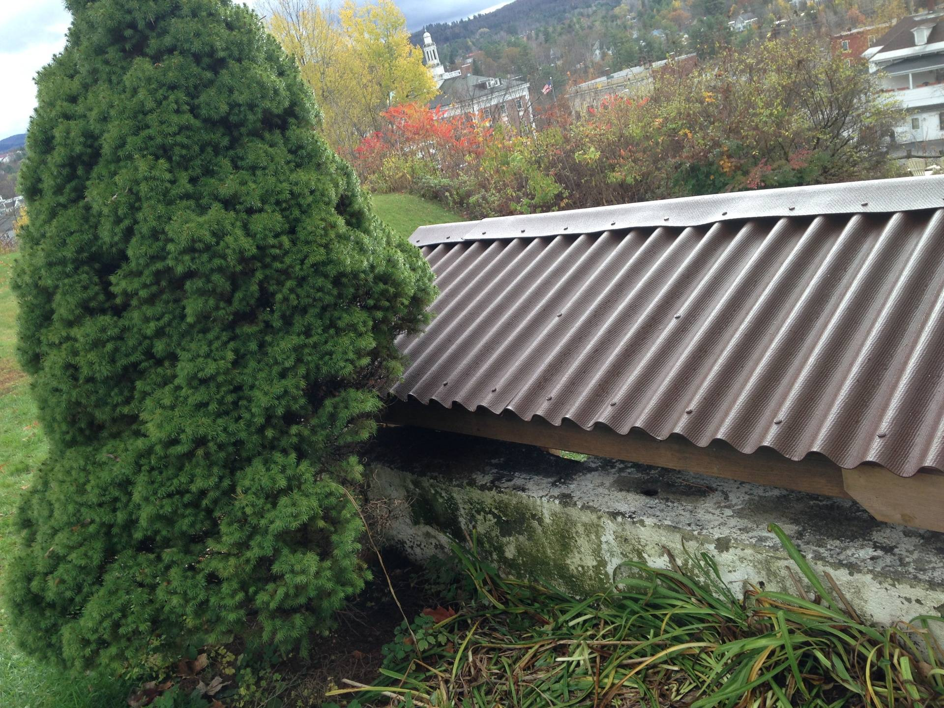 shed roof - built to clear large retaining wall