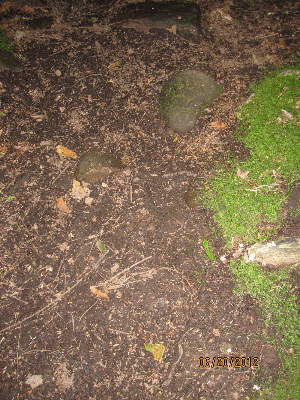 Possible Footprint - angle 2