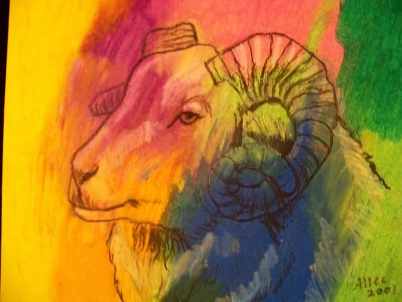 Colorful ram