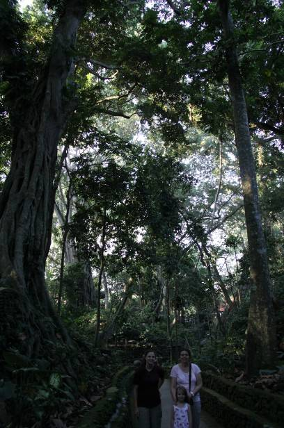 """Lilah Sciaky, Maya, and Noelle Gunst lost in """"The Jungle"""" (Bali, end of afternoon, May 2017)"""