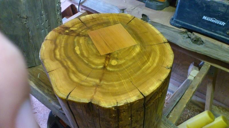 This is  Cedar stump