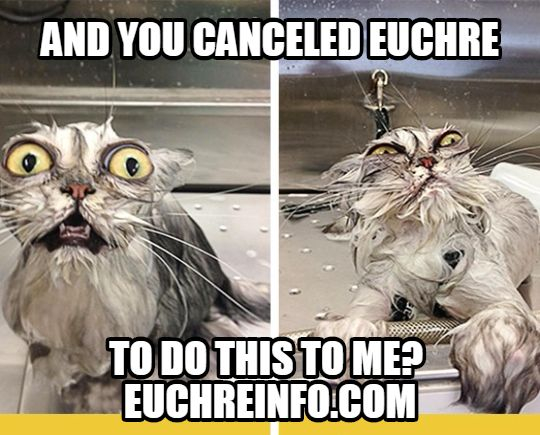 And you canceled Euchre to do this to me?