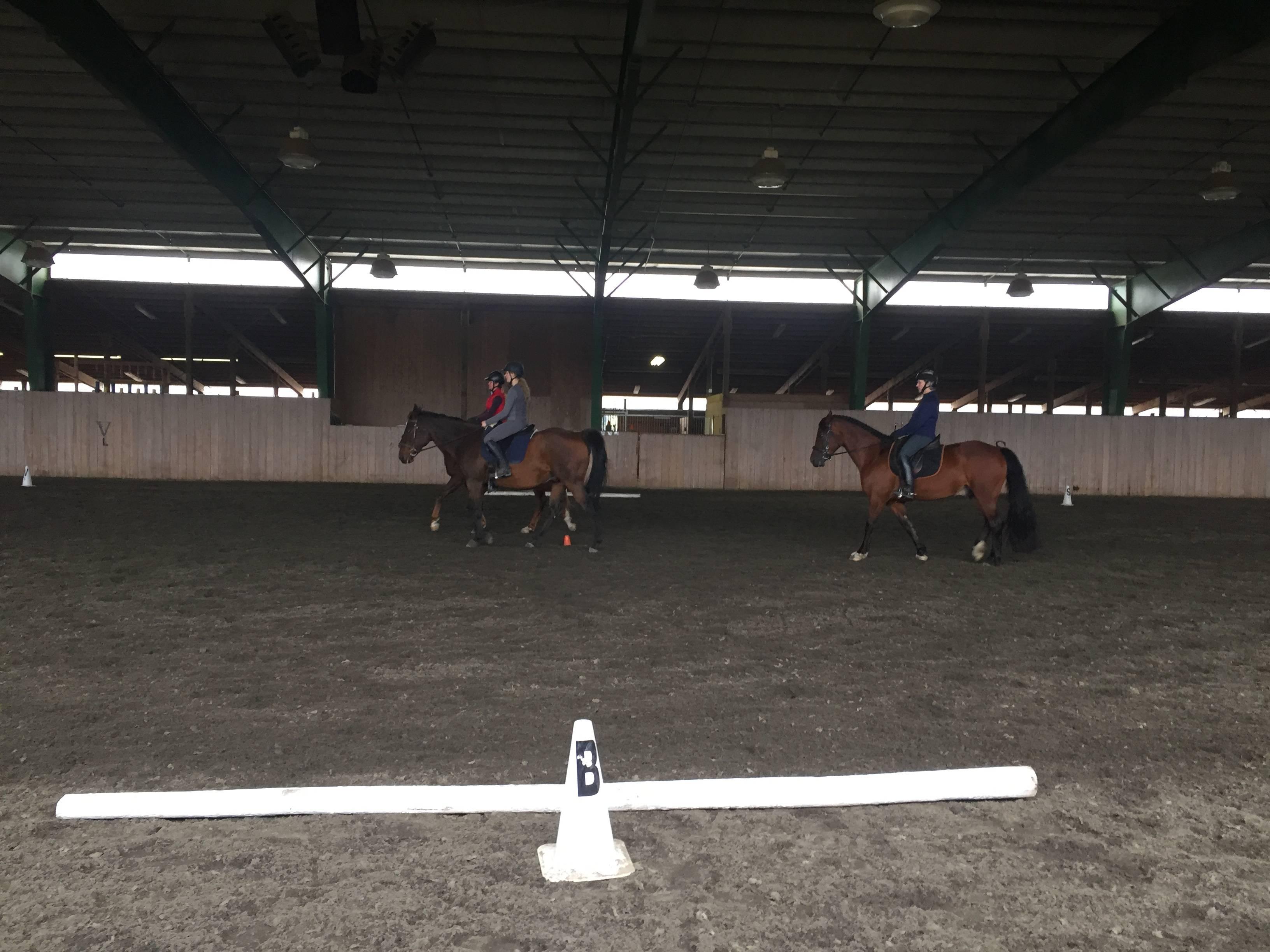 Quadrille Practice (with 3!)