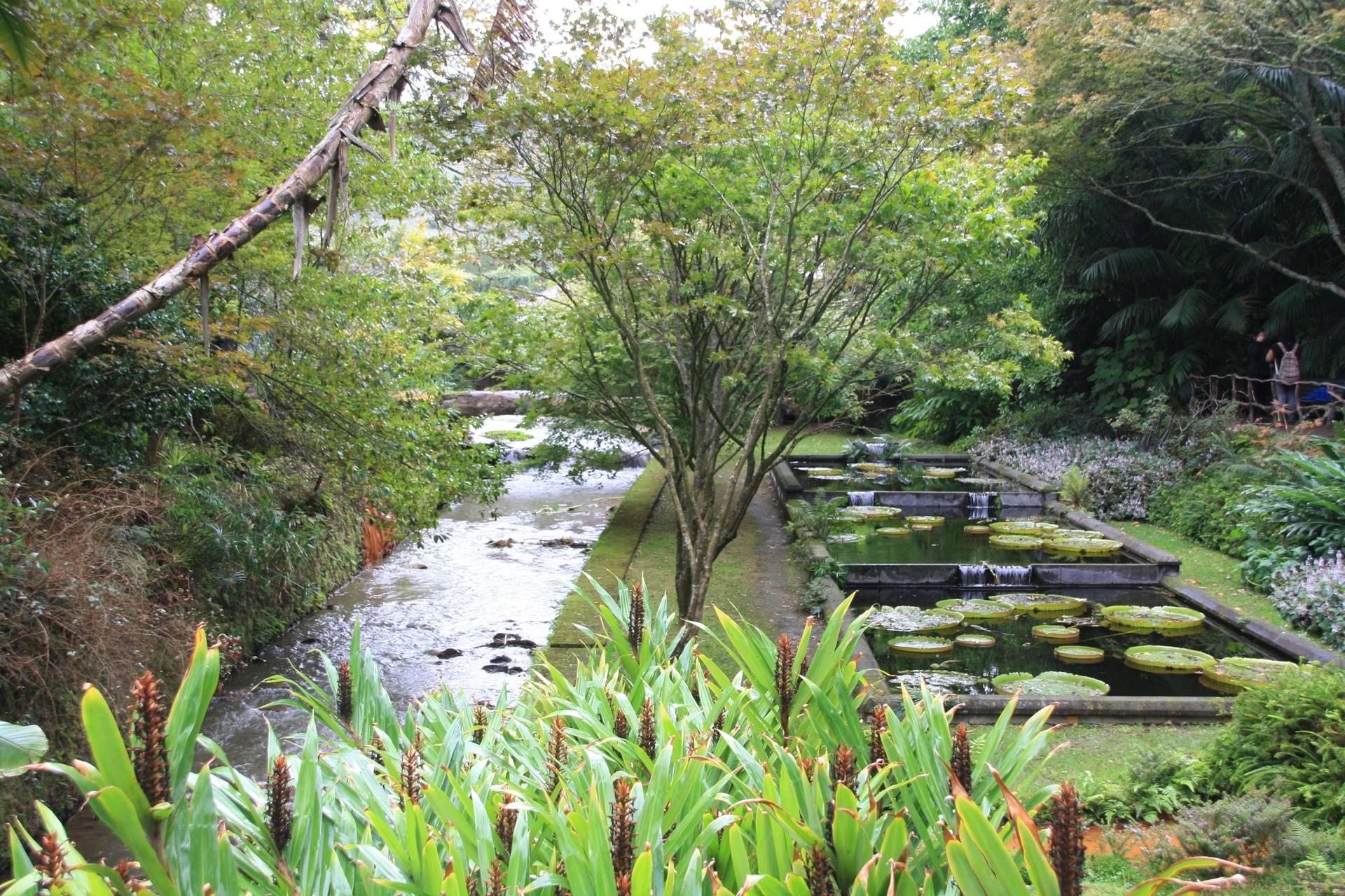 The Azores - Botanical Gardens