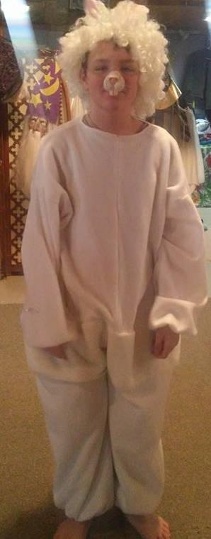 Small- Medium Bunny
