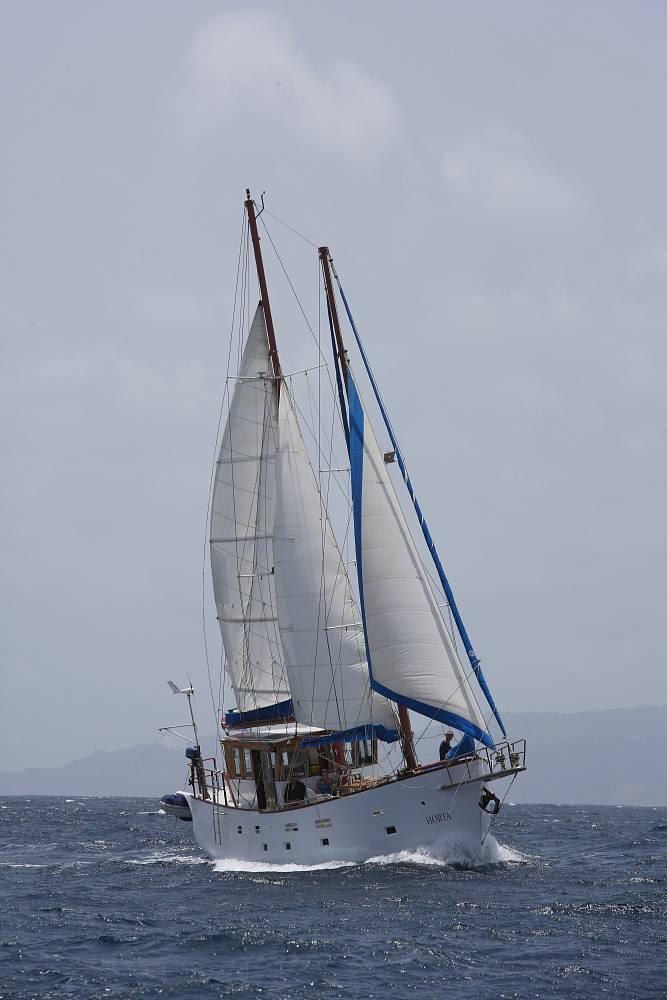 segeltoern karibik