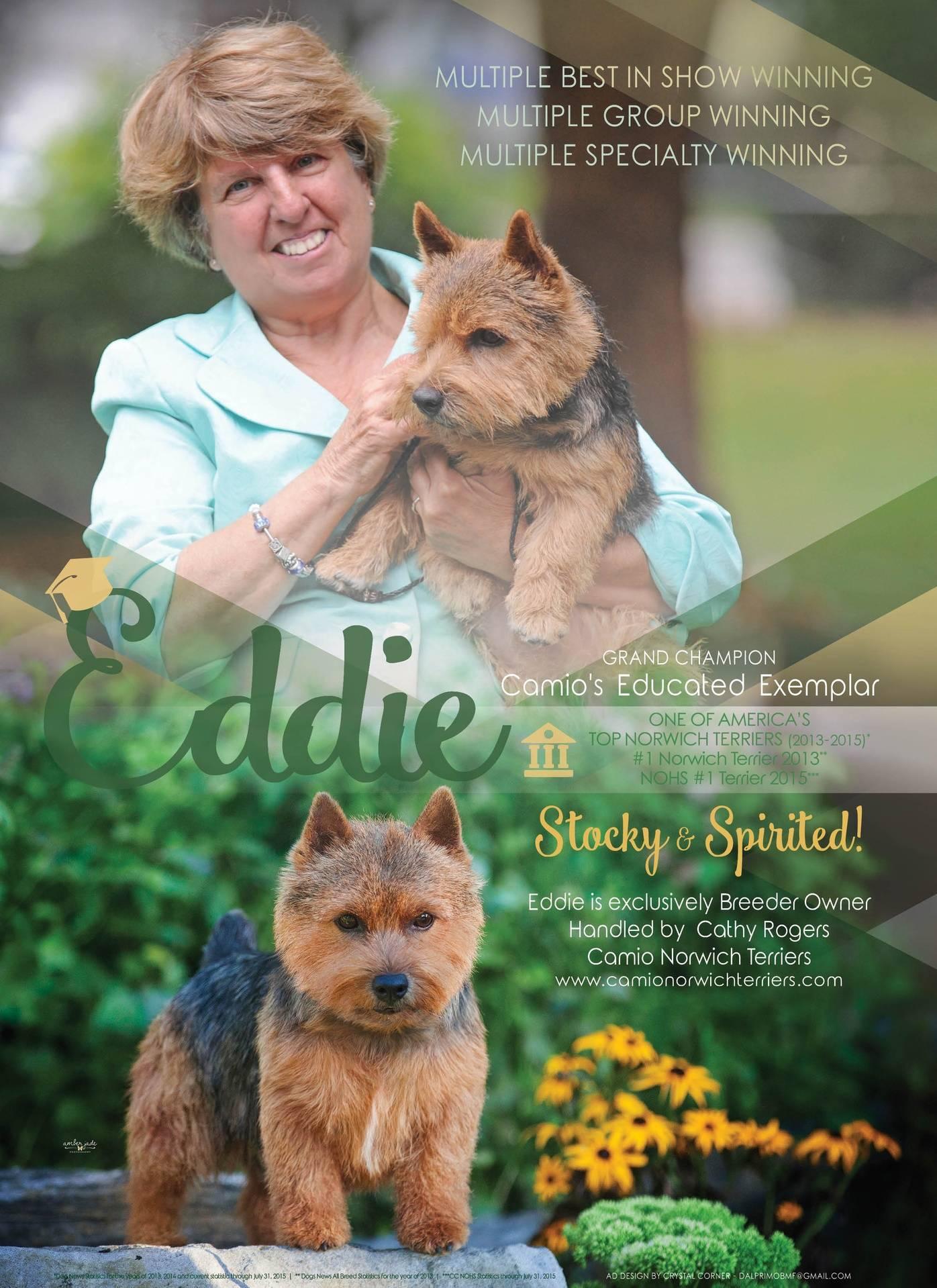 Dog News Ad Oct 2015