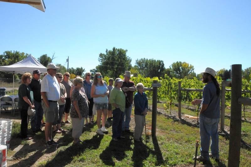 Josh talking about vineyard layout