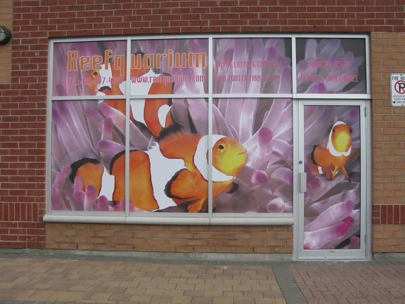 Reefquarium Marine Ltd., 21 Fairburn Drive, Unit 10, Markham, Ontario, L6G 0A5, Canada