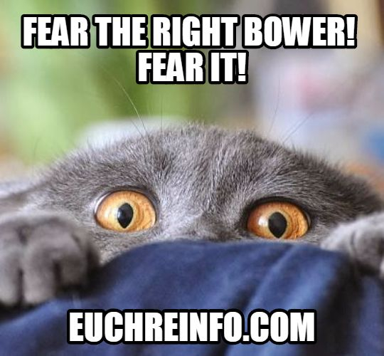 Fear the right bower! Fear it!