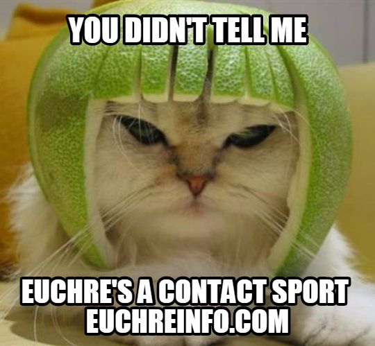 You didn't tell me Euchre's a contact sport.