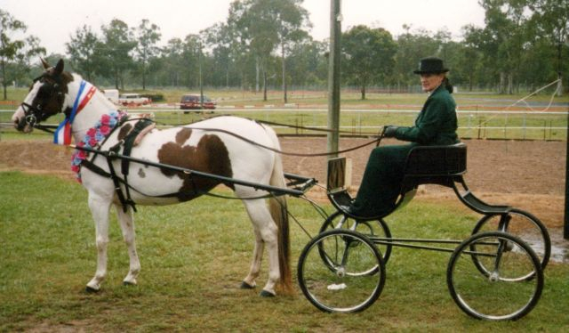 Pinto championships 2004