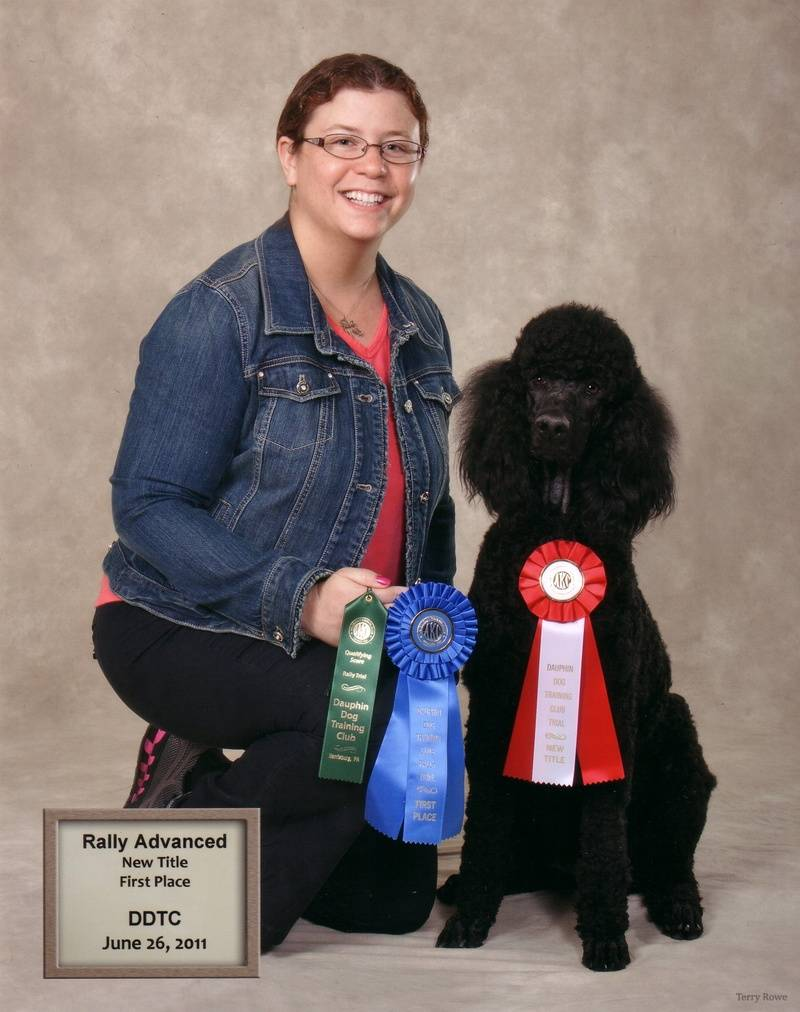 Pepper winning first place in Rally Advanced A and earning his RA title.  6/26/11.