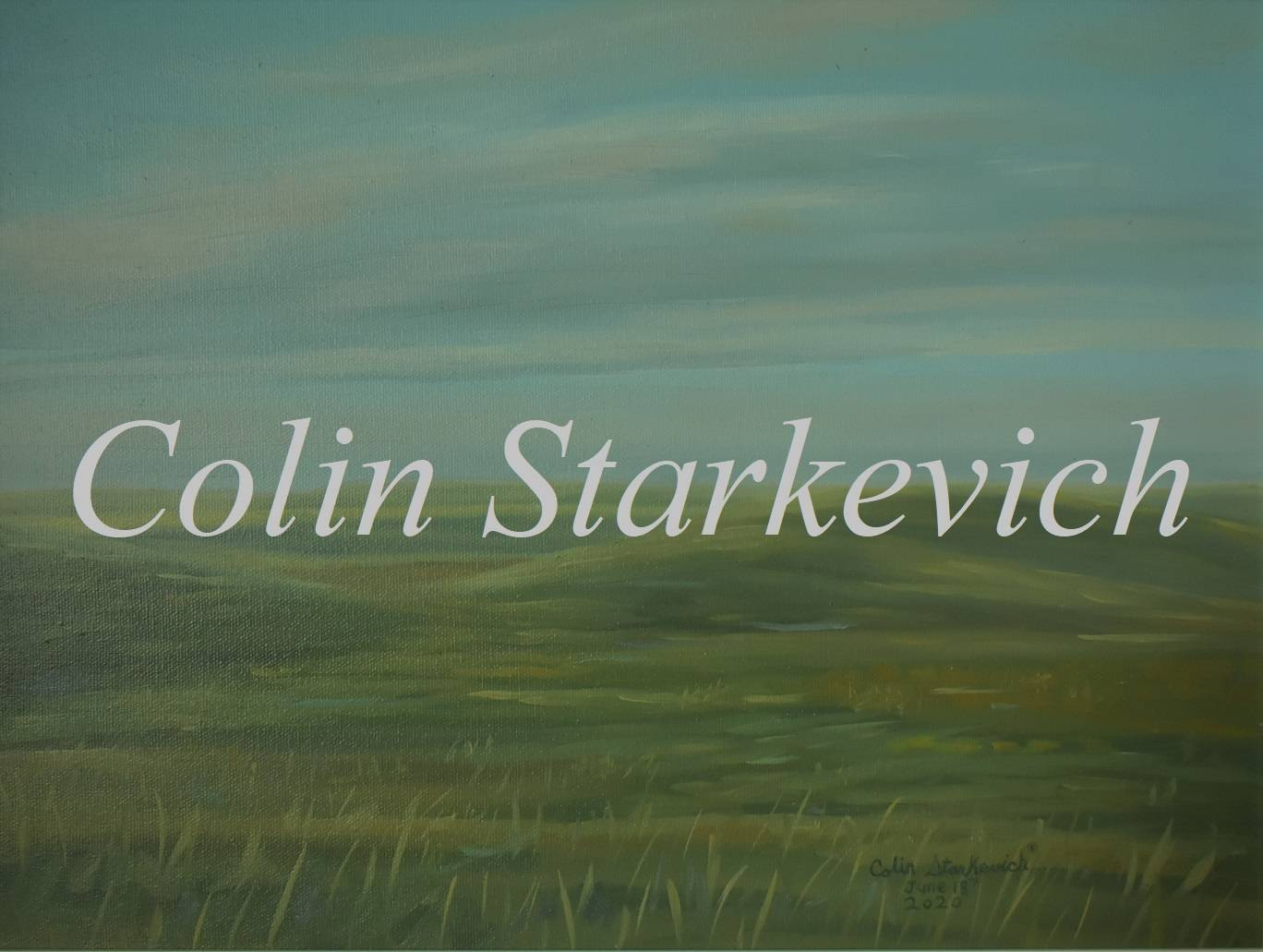 """Evening Grassland (12 by 16"""" oil on canvas)"""