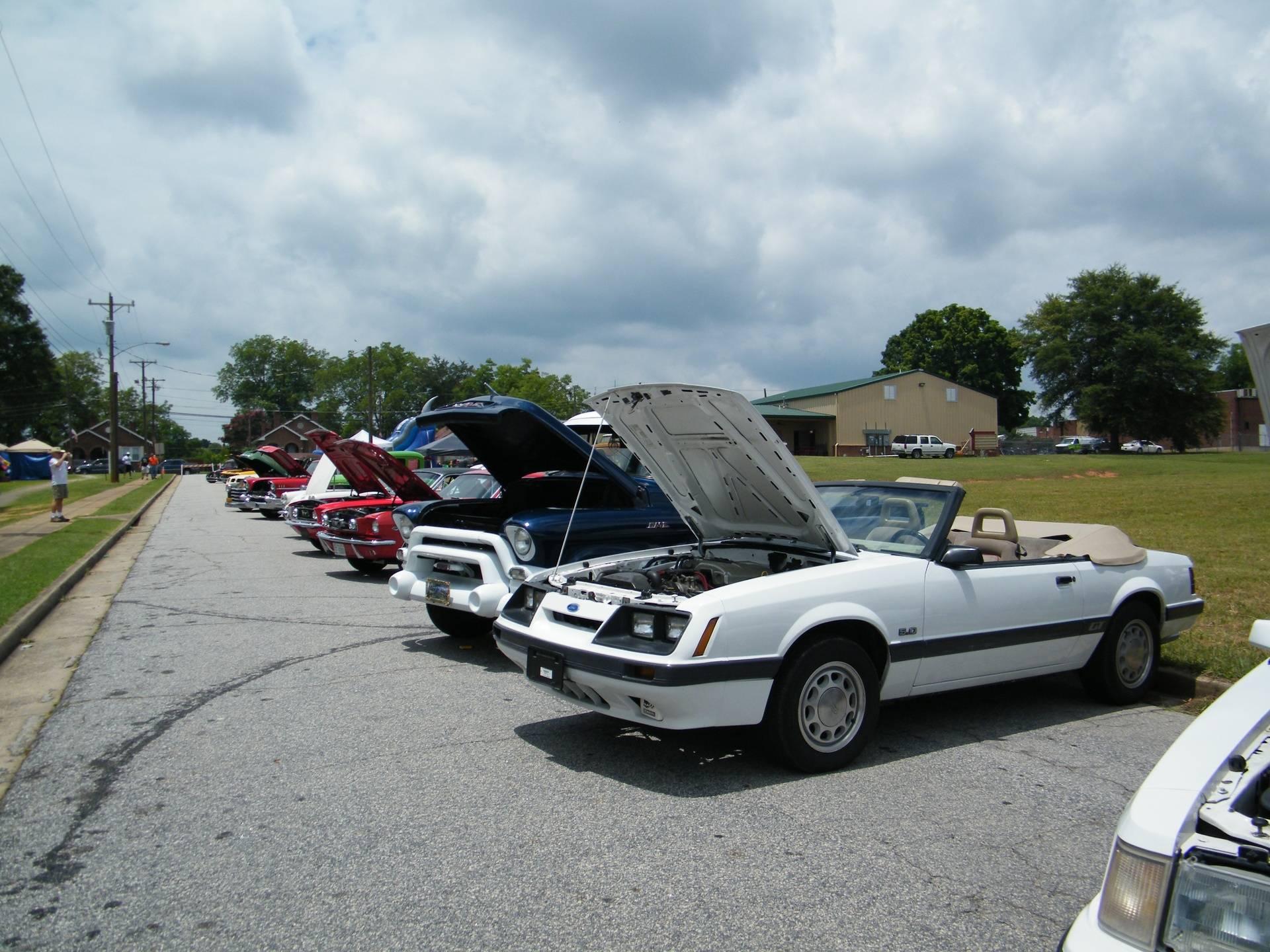 Fantastic display of winning vehicles