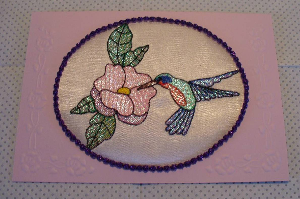 Stunning Hummingbird from Solange