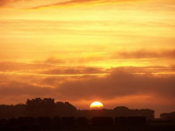 Riverton Highway Sunset - through the hedge