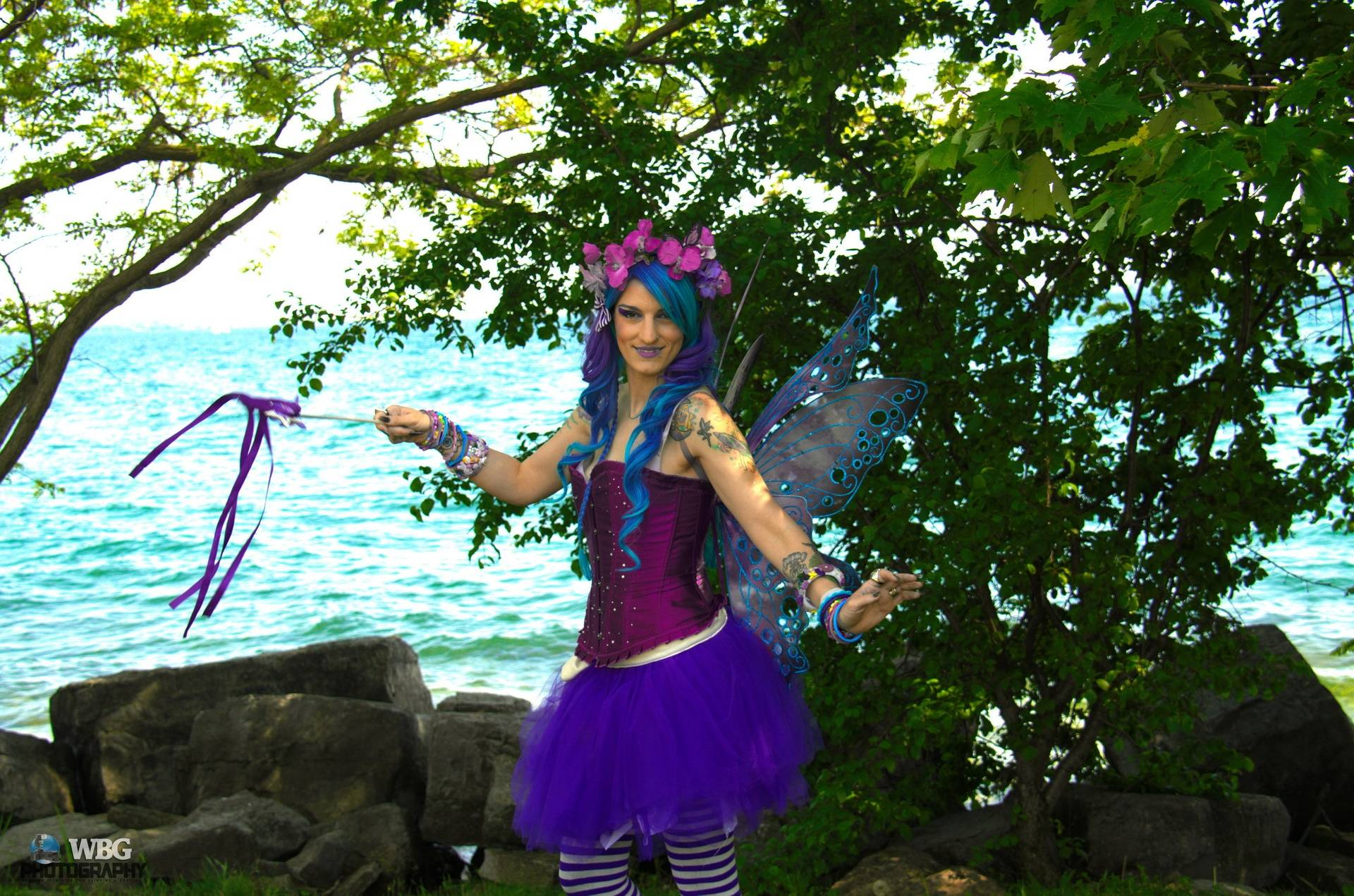 Lily the Fairy