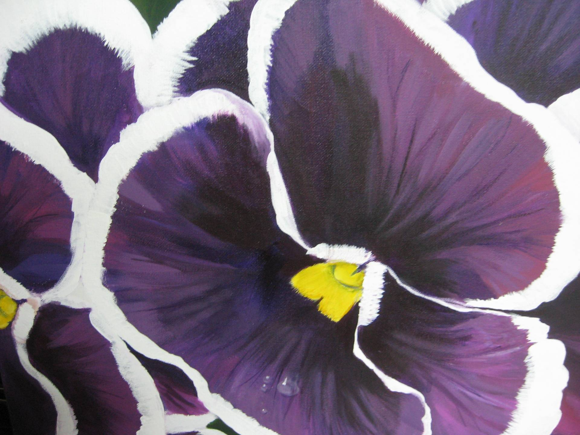 """Purple Pansies"""