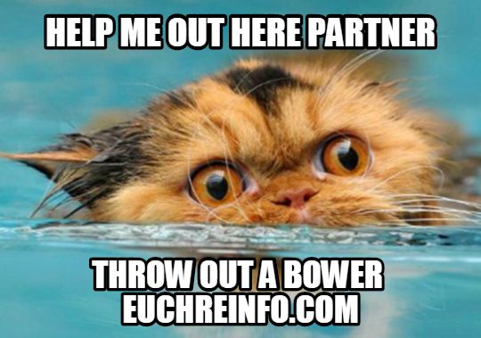 Help me out here partner... throw out a bower.