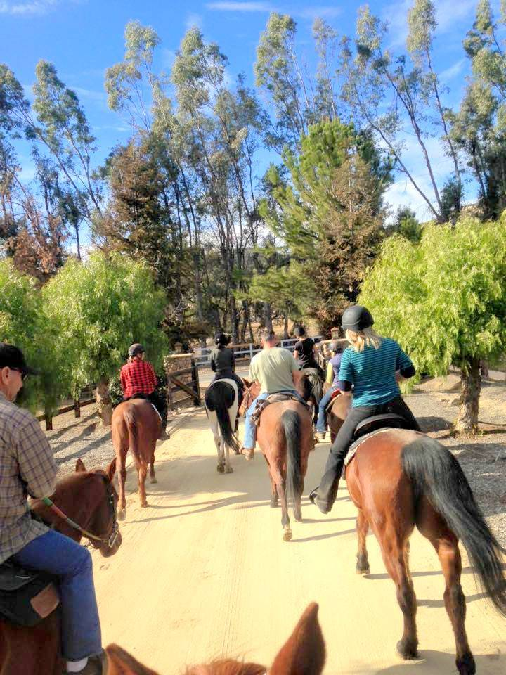Group Trail ride