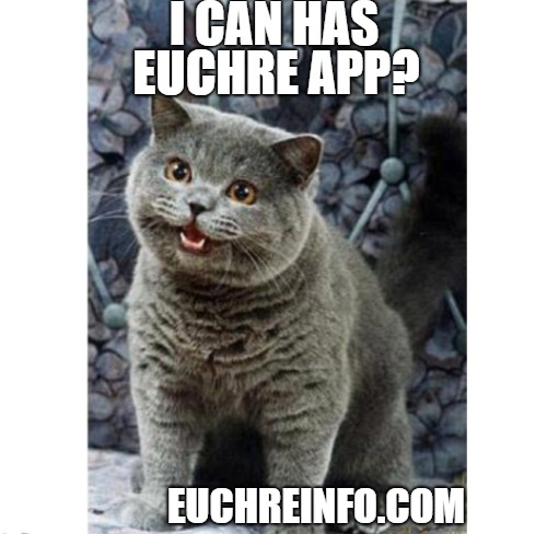 I can has Euchre app?