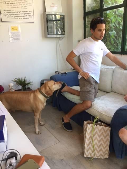 Dimitris and Faithful friend