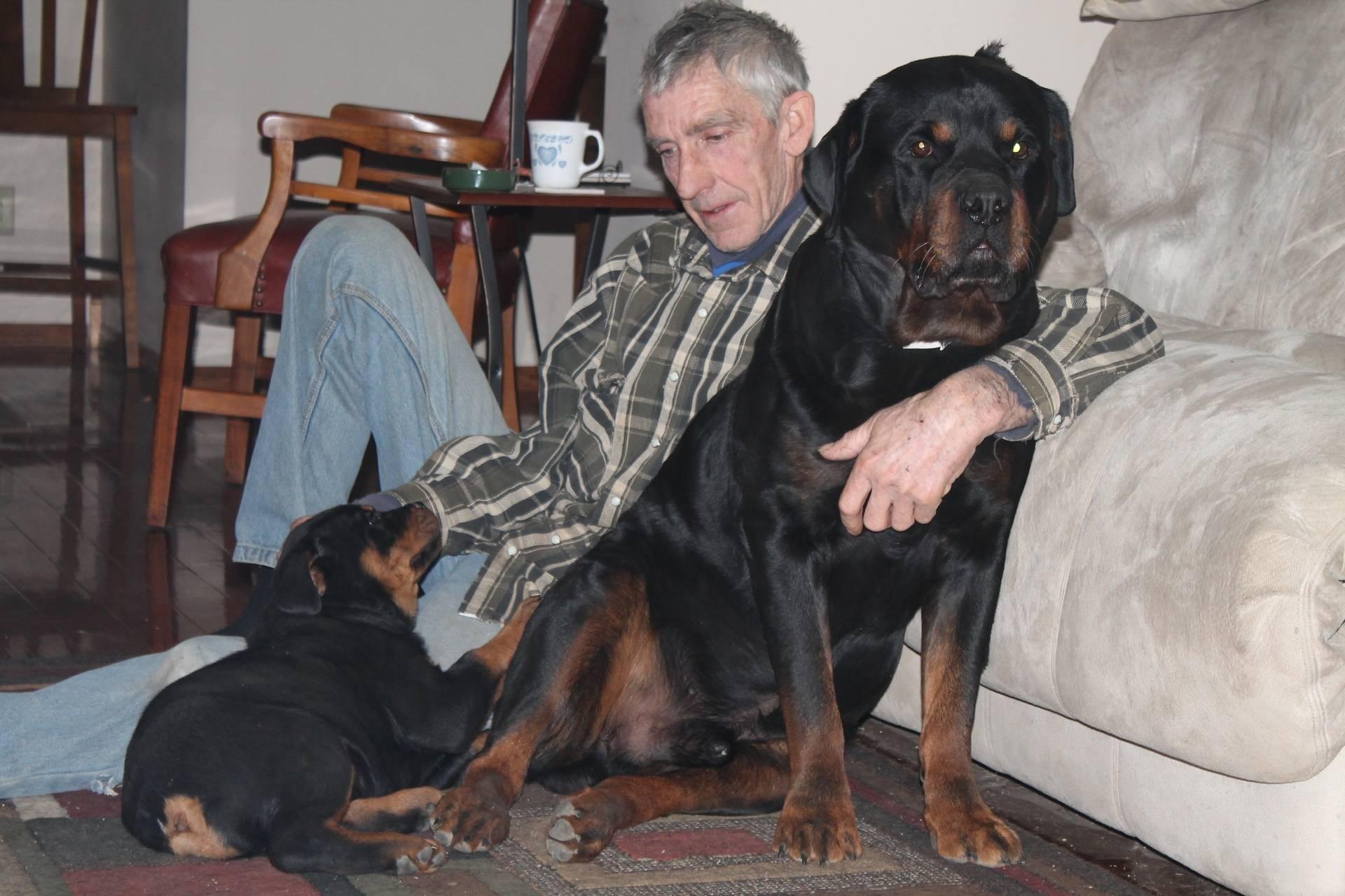 Puppy Becky and Frieden.