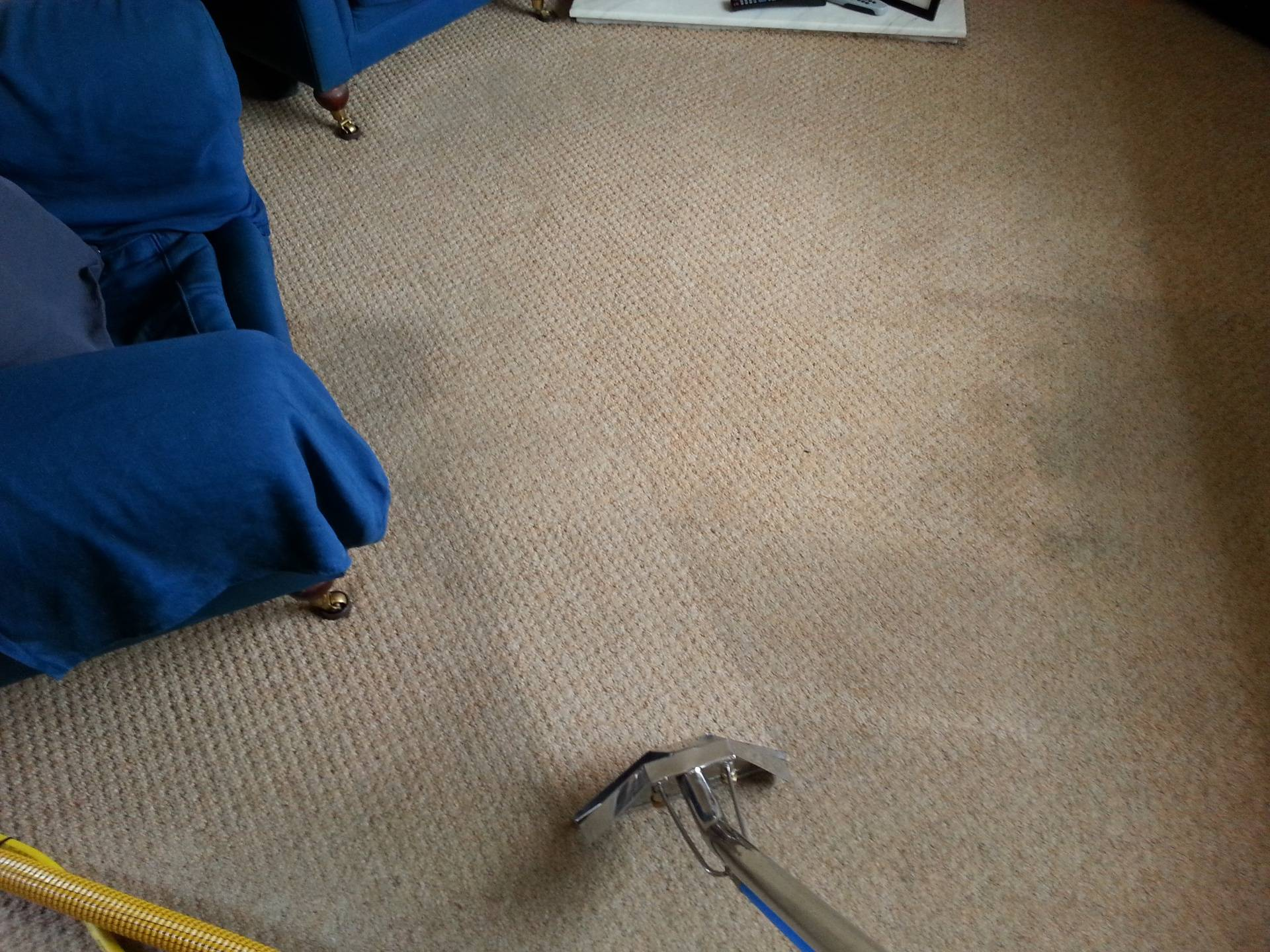 Lounge Carpet