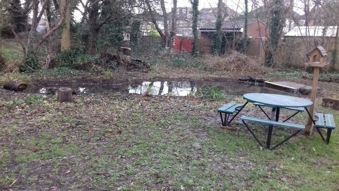 Dipping pond & Bench