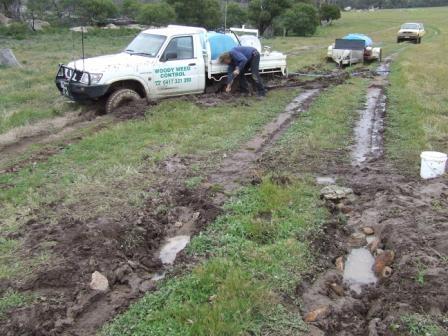 The perils of wet soil!