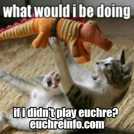 What would I be doing if I didn't play Euchre?