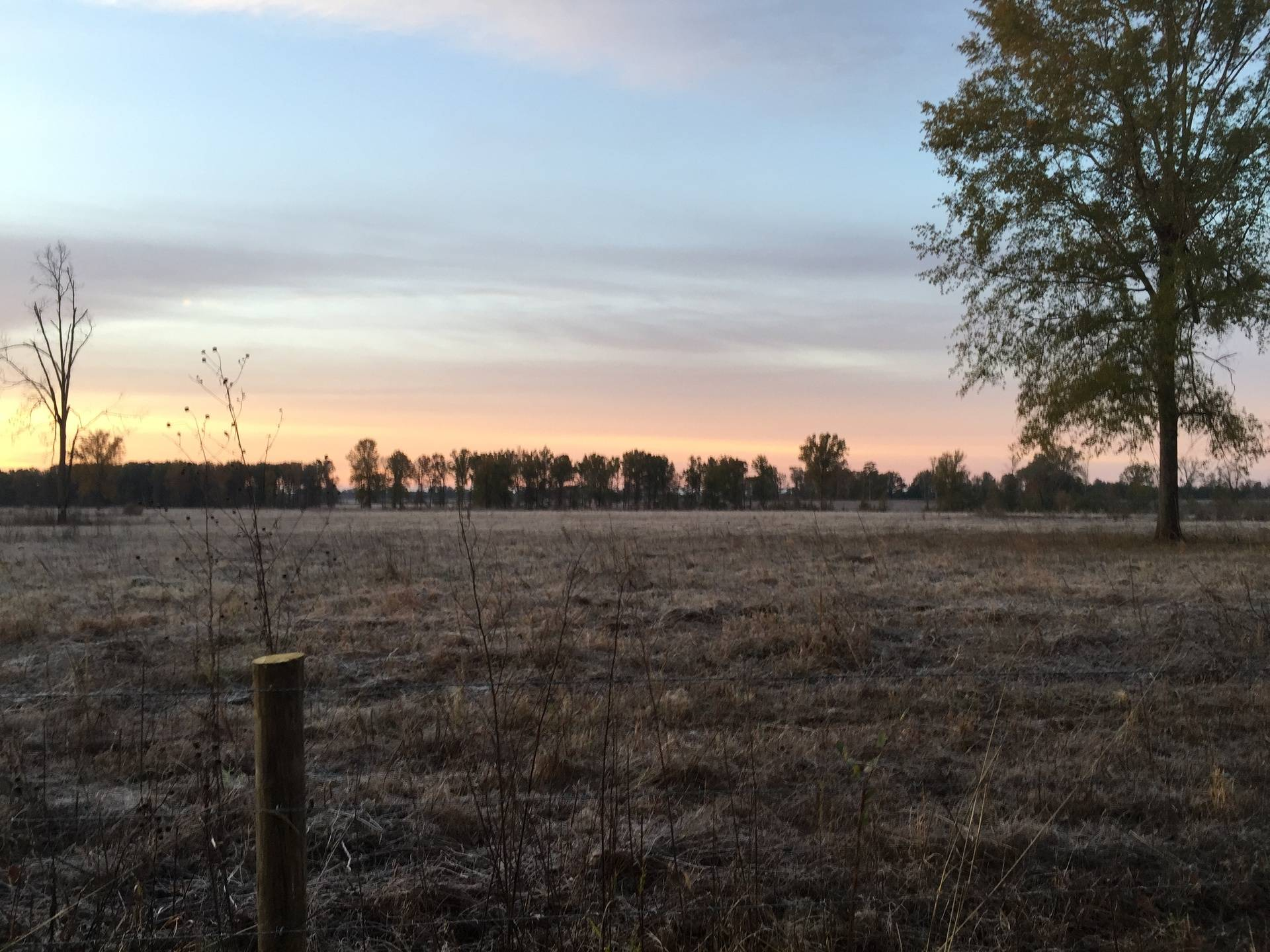 Sunset over a fence line
