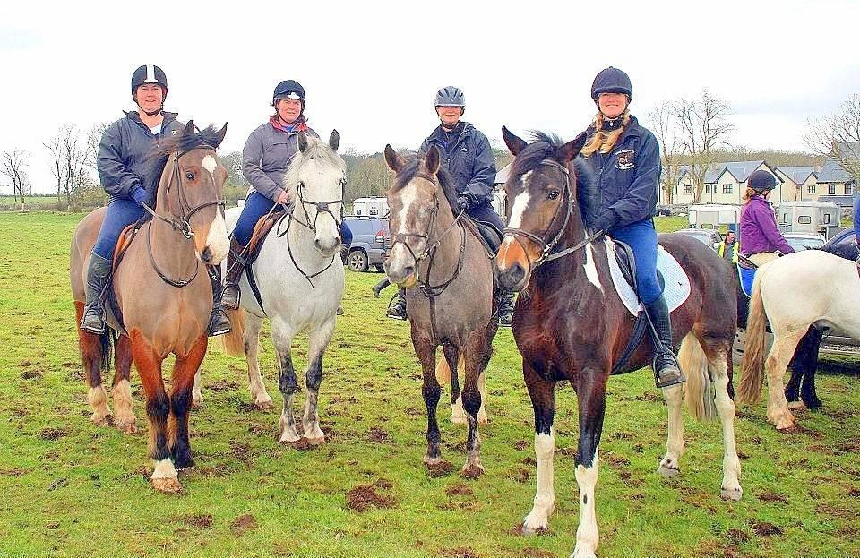Kathleen Elliott Equestrian Training