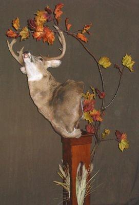 2005 Buck