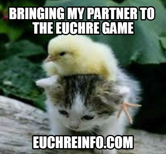 ...bringing my partner to the Euchre game.