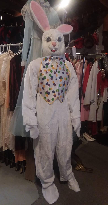 Easter bunny w/vest