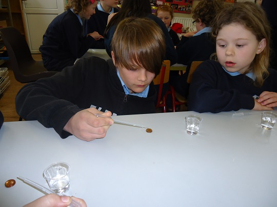 Surface tension experiment!