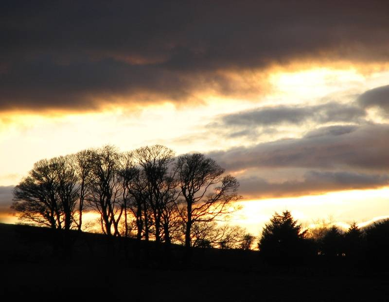 March sunset 11