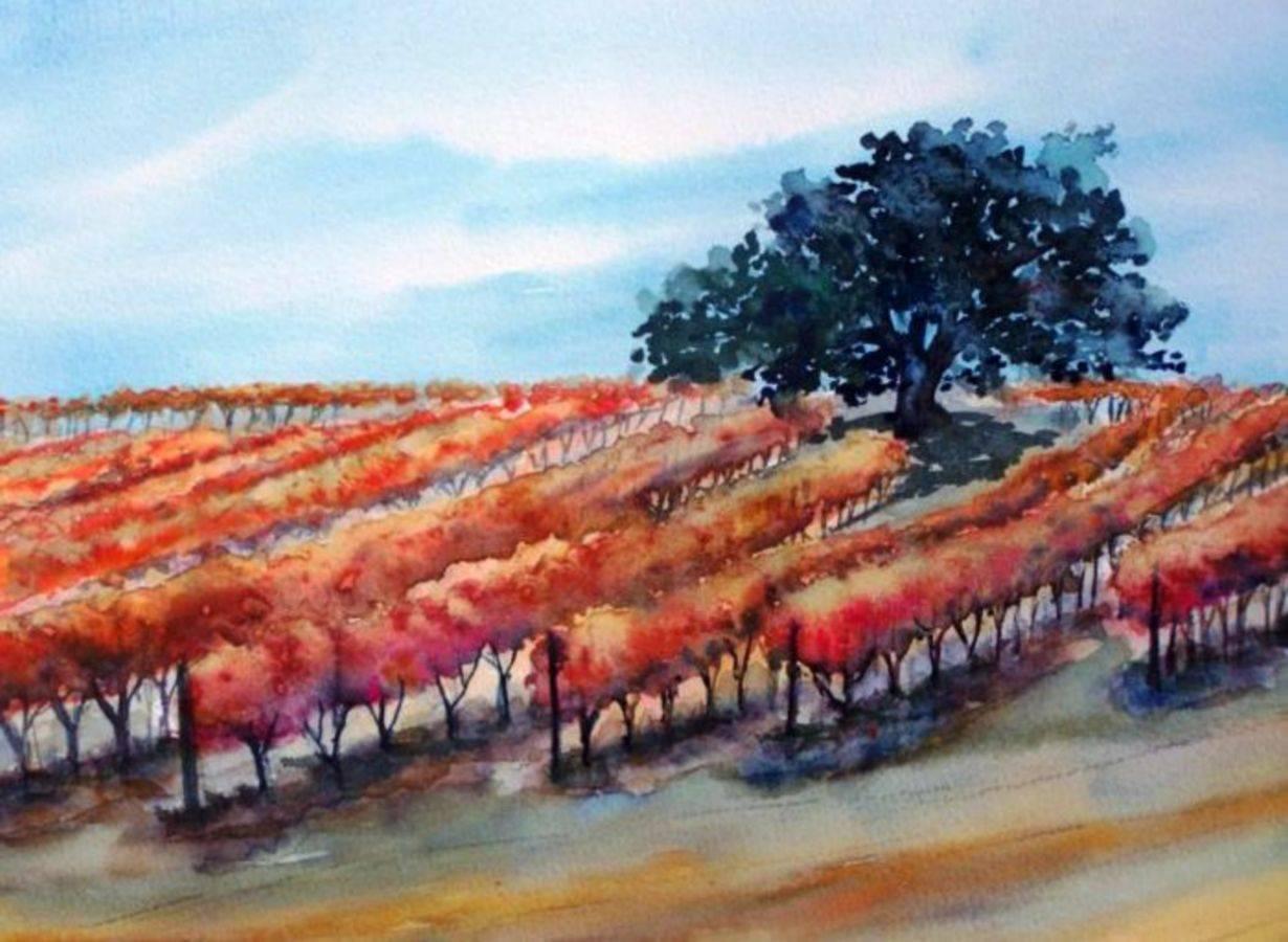 Corbett Canyon Vineyards, San Luis Obispo County