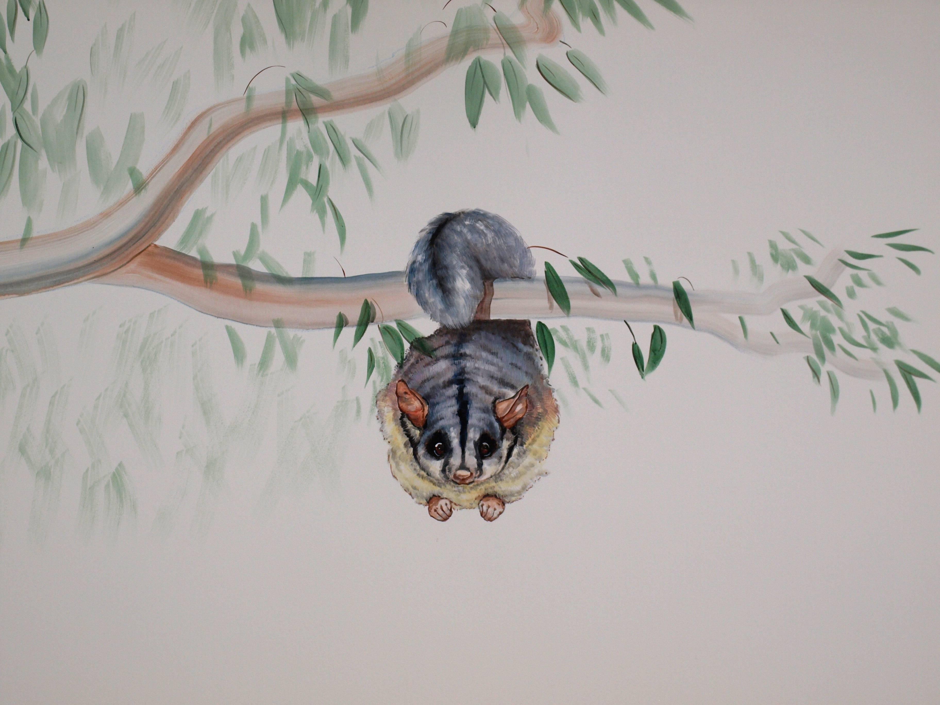 AUSSIELAND  possum