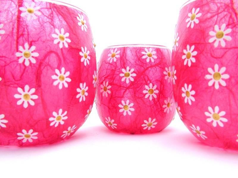 Shocking Pink Daisies