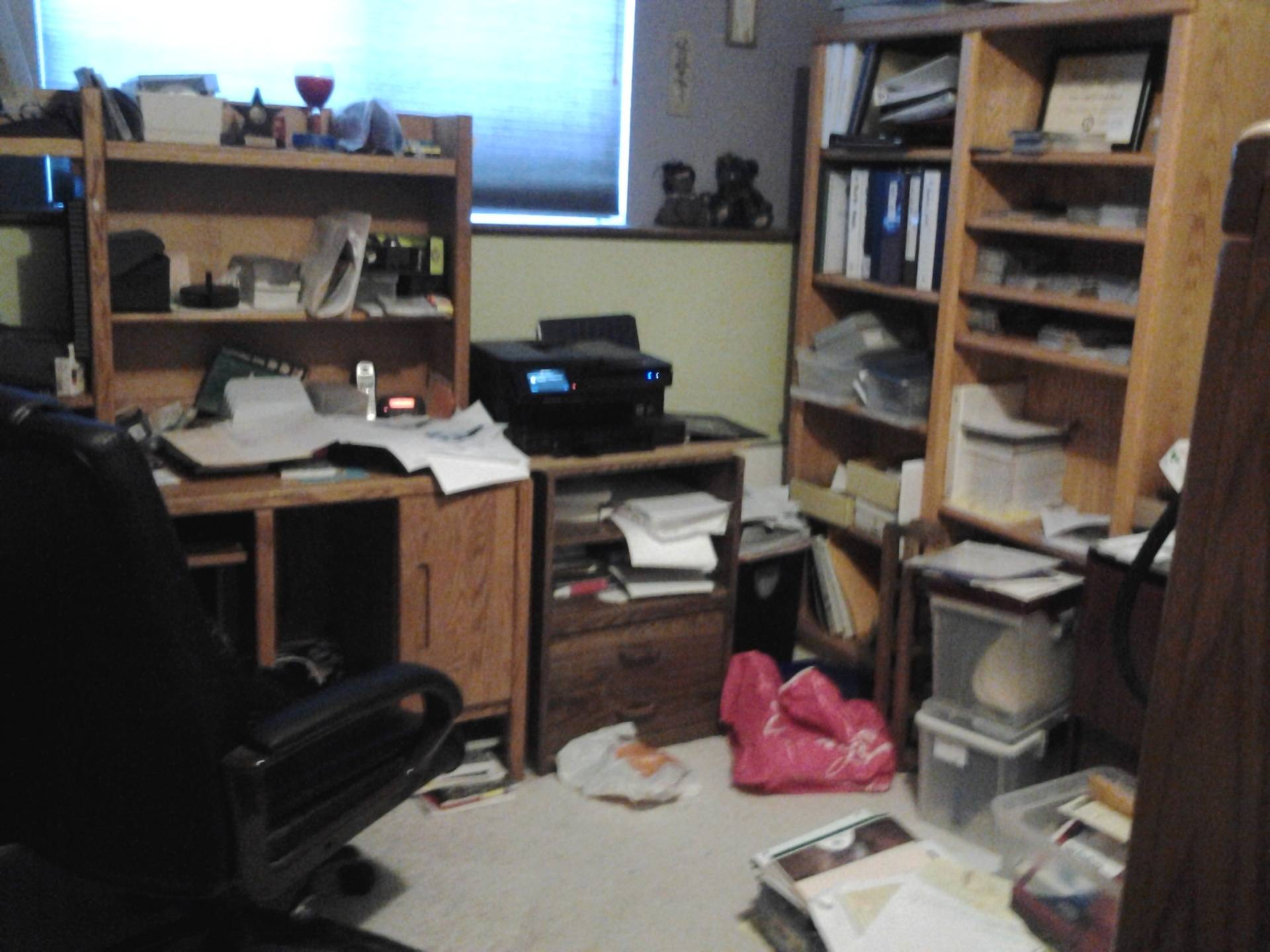 Office Organization- Before