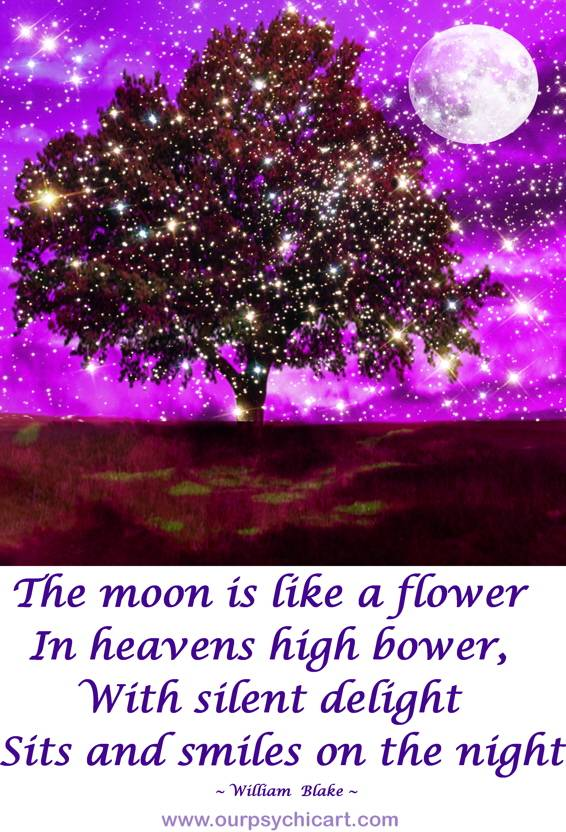 The moon is like a flower